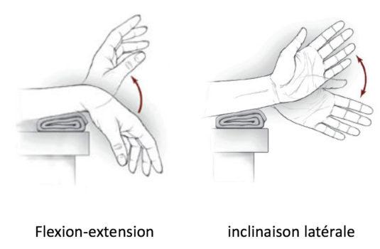 Mobilité du poignet
